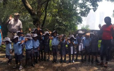 Zambezi Crescent pre-schoolers end the year on a great adventure
